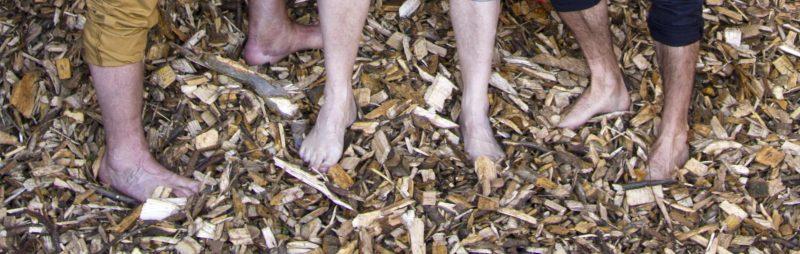 Forschungsprojekt Opossum: Nackte Füße in Hackschnitzeln